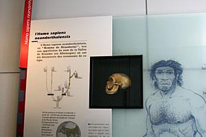 Musée de la Préhistoire de Nemours
